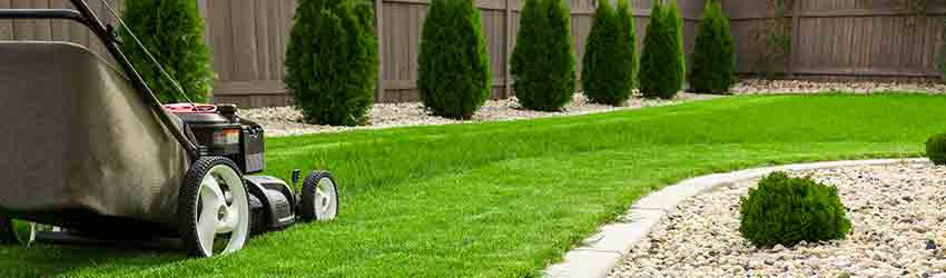 lawn mowing and gardening service